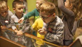 Czytaj więcej o: Muzealna Brygada – Zadanie 12